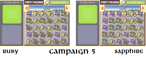 campaign-5.png
